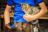 Fototapeta Zwierzęta - Zabawa z kotem