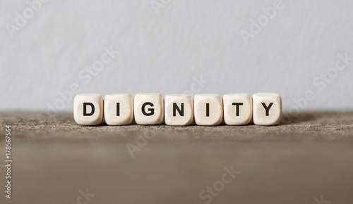 Word DIGNITY made with wood building blocks Fototapeta