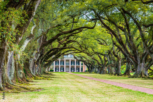 View from the outside of Oak Alley Plantation, a plantation and National Historic Landmark located near the Mississippi River in the community of Vacherie, Louisiana, USA Canvas Print