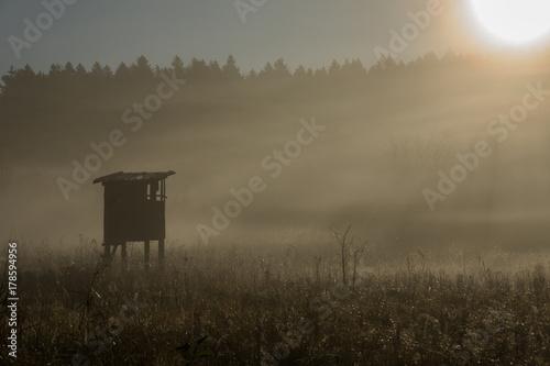 Cadres-photo bureau Chasse Jägerstand zwischen Nebelschleier im Moor
