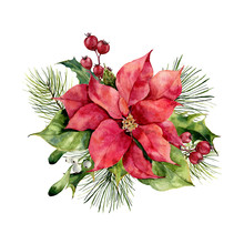 Watercolor Poinsettia With Chr...