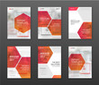 Pharmaceutical brochure cover templates set.