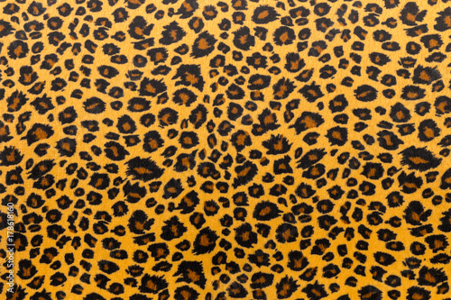 Photo Stands Panther closeup artificial tiger skin pattern