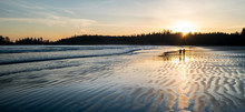 Two People Walking Along A Beach At Sunset In Tofino, British Columbia