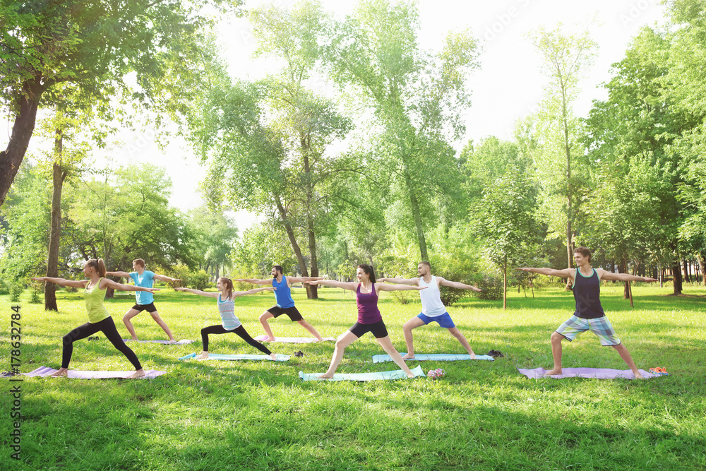 Fototapety, obrazy: Group of young people training in park