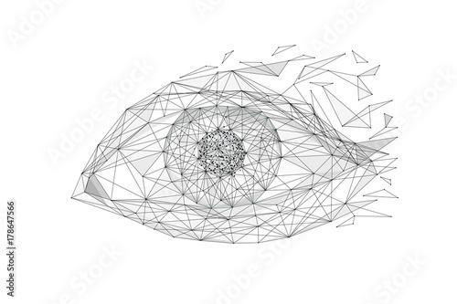 ilustracja-oko