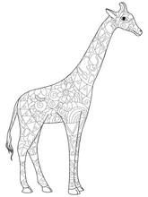 Giraffe Coloring Book For Adul...
