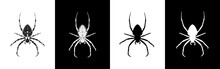 Set Of Spider Insect Vector Il...