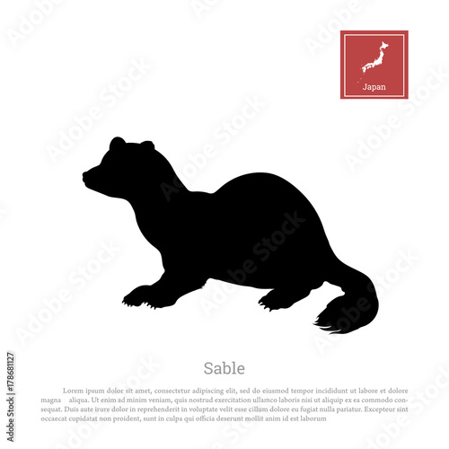 Fotografie, Obraz  Black silhouette of a japanese sable on white background