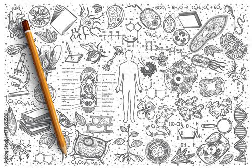 Fototapeta Hand drawn Biology vector doodle set background