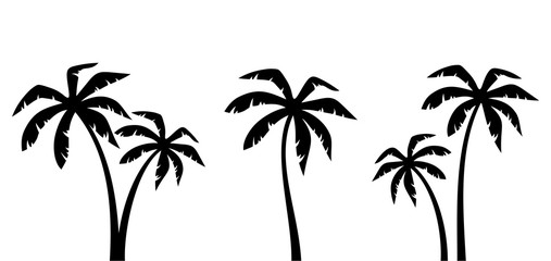 Set of vector black silhouettes of palm trees isolated on a white background.
