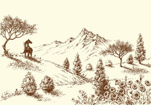 Landscape, Wilderness And Horse Drawing
