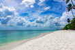 paradise tropical beach palm the Caribbean Sea