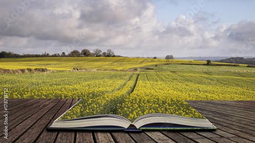 Foto op Plexiglas Bleke violet Beautiful agricultural English countryside landscape during early Spring concept coming out of pages in open book