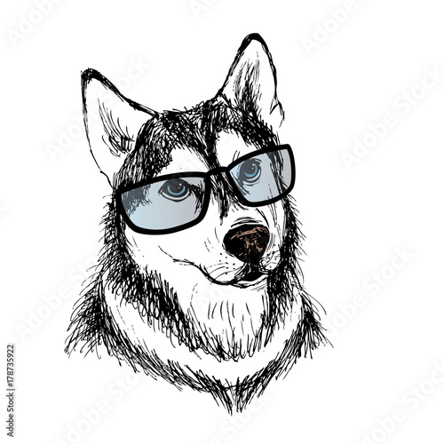 Photo sur Toile Croquis dessinés à la main des animaux Fashionable dog with glasses,