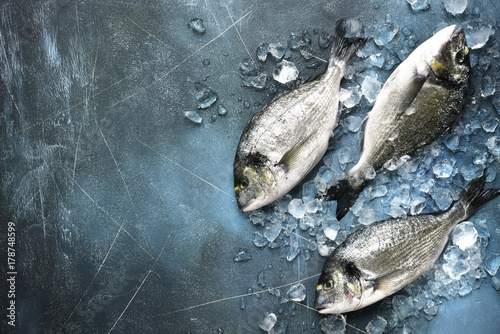 Fotografie, Obraz  Raw fresh organic dorado or sea bream.Top view with copy space.