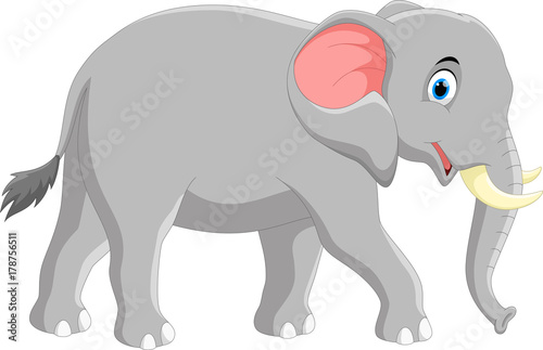 Fototapeta premium Vector illustration of cute elephant cartoon isolated on white background