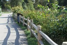 Chickadee Sitting On A Fence Alongside A Walking Path