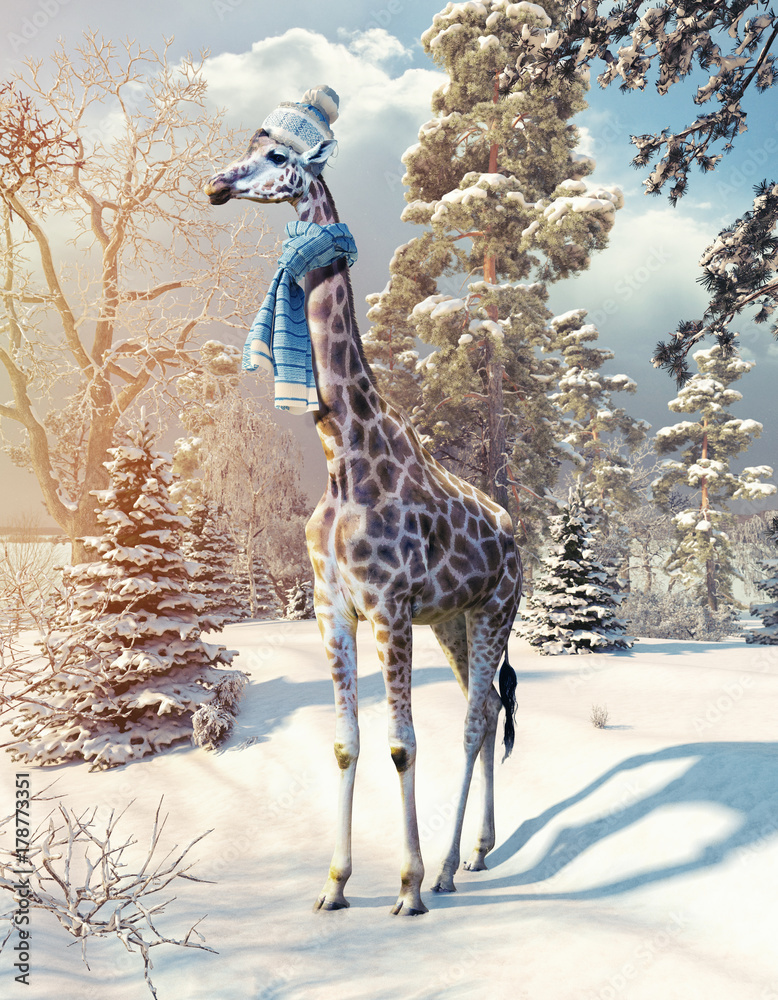 giraffe in the winter forest