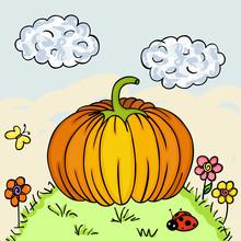 Big Pumpkin In Forest