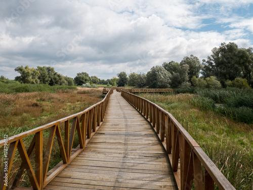 Poster North Sea Wooden walk bridge in nature park Kopacki rit