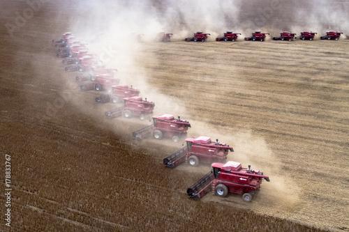 Mato Grosso, Brazil, March 02, 2008: Mass soybean harvesting at a farm in Campo Tablou Canvas