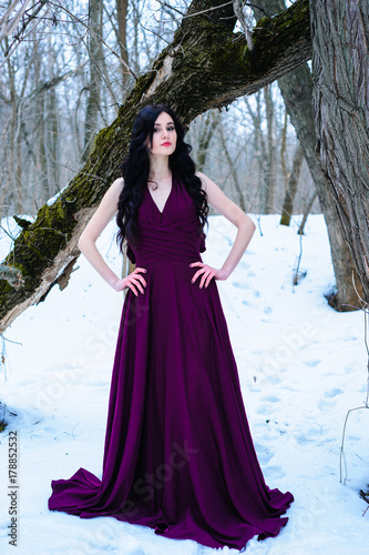 Garden Poster A young woman in an elegant burgundy evening dress in winter among trees and snow conceals a riddle