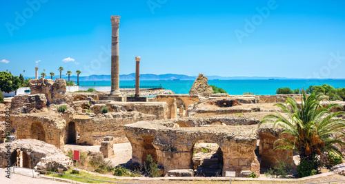 Foto op Plexiglas Tunesië Ruins of ancient Carthage. Tunis, Tunisia, North Africa