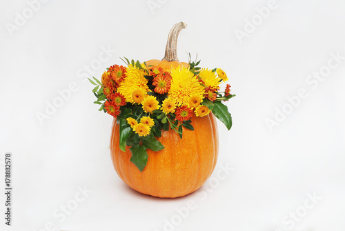 Fotografía Pumpkin autum ncolorful flower arrangement on white background