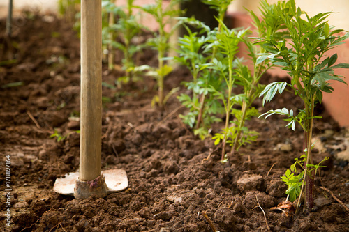 Deurstickers Droogte A equipment for manual dig a hole to plant trees