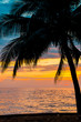 Coconut tree on the beach with sunset sky background ,vintage tone.