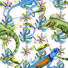 Exotic Iguana Pattern In A Wat...