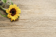 Single Sunflower On Wooden Bac...