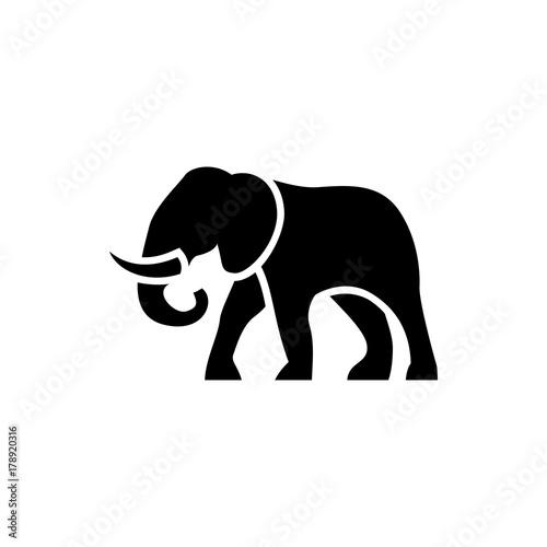 Obraz na plátně elephant icon illustration