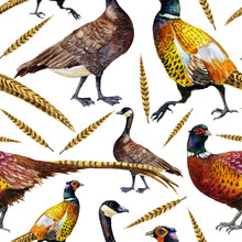 Hand Painted Watercolor Vintage Autumn Seamless Pattern With Pheasants And Goose