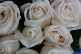 A Bouquet of White Rose