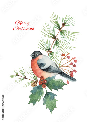 Foto Watercolor vector Christmas bouquet with bullfinch and fir branches