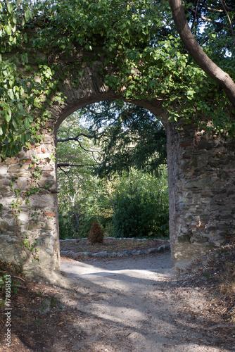 Tuinposter Weg in bos natura