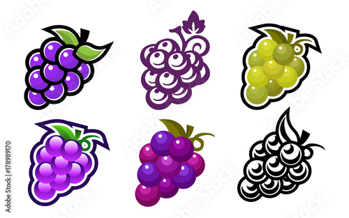 Set of grape fruit icons Fototapet