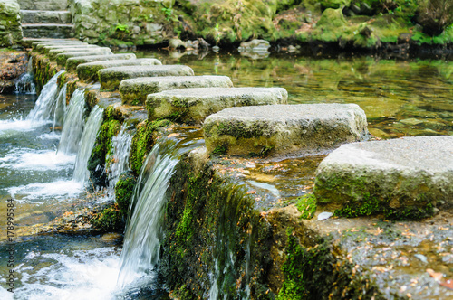 Photo  Stepping stones on the Shimna River, Tollymore Forest Park, Newcastle, Northern