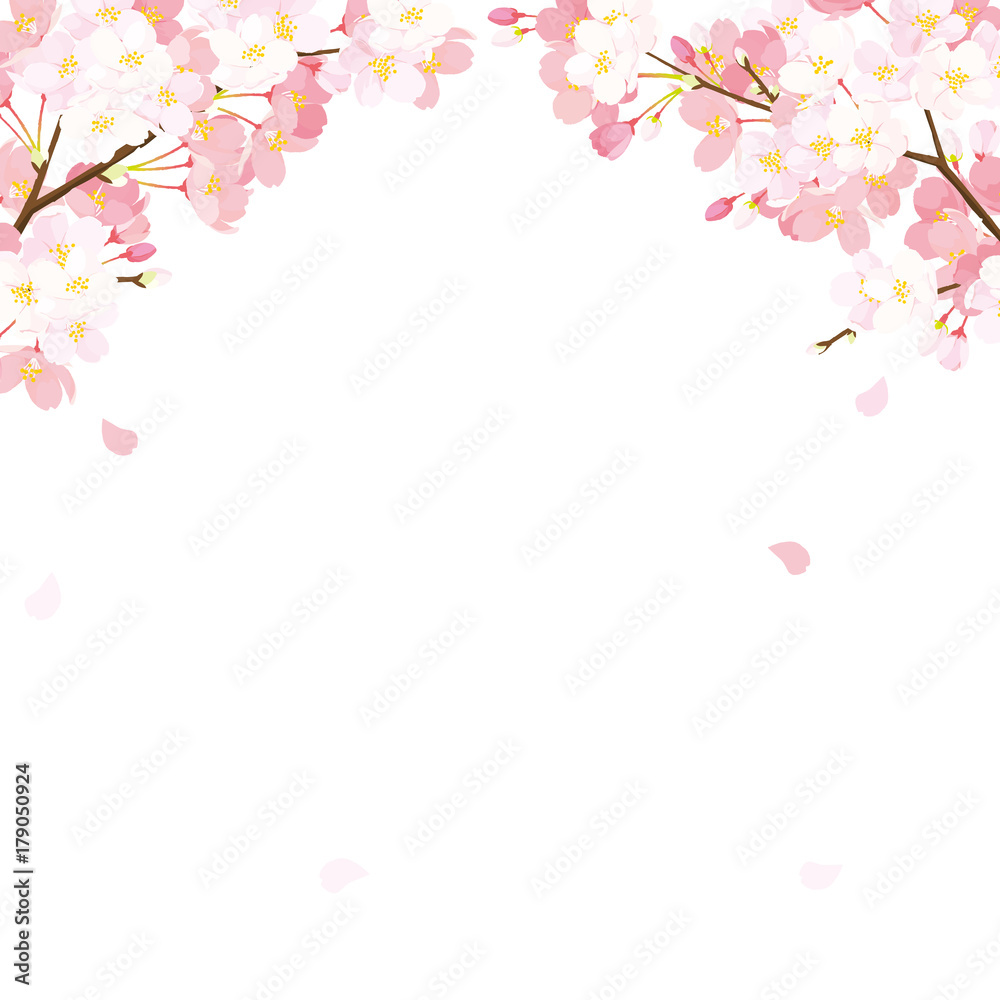 photo & art print 桜 背景イラスト | europosters