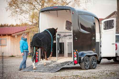 Cuadros en Lienzo  Pferd verladen zum Transport