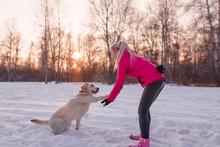 Labrador Dog Gives Girl Blonde...