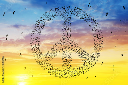 Vászonkép Silhouette of birds flying in peace symbol formation at sunset sky