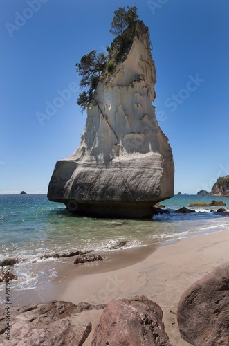 Deurstickers Cathedral Cove Cathedral Cove Coromendal New Zealand