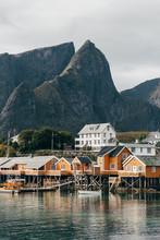 Houses On Lake Shore