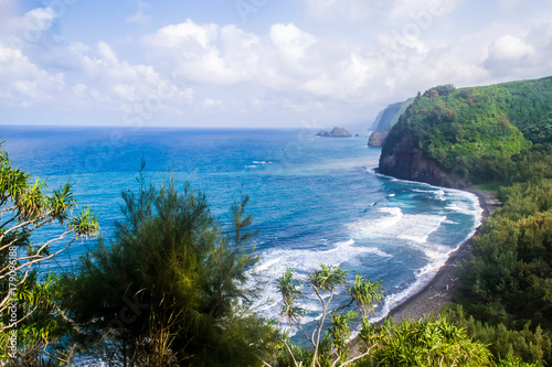 Staande foto Eiland Coast of the island, the ocean in Hawaii