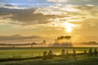 canvas print picture - Landschaft in Estland