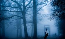 Silhouette Of Gun On Game Shoot, Norfolk