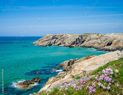 côte sauvage de Quiberon, Morbihan, Bretagne Canvas Print